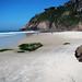 Praia da Joatinga
