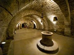 Palencia (Topyti) Tags: espaa geotagged olympus spagna cripta pozzo palencia castillaylen 714mm catedraldesanantoln criptadesanantoln geo:lat=42011215 geo:lon=4537396