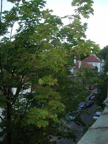 En Varsovia