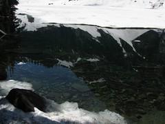 Reflection in Lake Serene