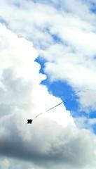 Clazul! (Diego Dalmaso) Tags: blue brazil sky kite azul brasil diego cu infinito par pipa paragominas diegodalmaso