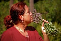Lavender queen :o) (Adam Maran) Tags: flowers portrait nature grass garden nikon mother lavender queen mum d40