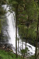 Oz3 255 (Gillian in Brussels) Tags: nature coast waterfall nationalpark australia shore greatoceanroad erskinefalls greatotwaynationalpark