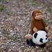 Monkey and Panda 2 by mustanir