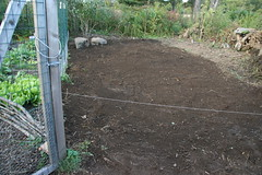 cleared plot
