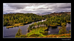 Tarn Hows. (numanoid69) Tags: uk autumn trees england lake mountains nationalpark heather lakedistrict cumbria bracken tarn tarnhows almostanything prideofengland