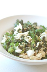 asparagus pinenut & buffalo mozzerella salad
