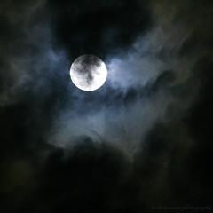 On moon wings (lynne_b) Tags: autumn light sky moon fall nature night clouds illinois wings haze october shadows seasons nightshot orb luna smokey heavens celestial octobermoon explored