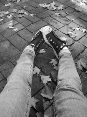 Bricks and Converse (Megan_Christine) Tags: autumn bw white black leaves shoes legs bricks converse allstar chucks chucktaylors allstars blackconverse converselowtops bwconverse sliponconverse