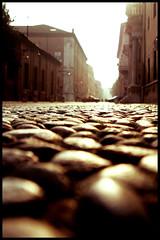 A bug's life (manlio_k) Tags: street wednesday bokeh pavement cobblestone pointofview ferrara manlio castagna pav manliocastagna manliok