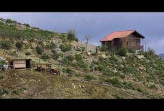 Pea Escrita (Maximo Lopez) Tags: parque horses espaa naturaleza nature caballos spain andalucia granada turismorural almuecar almunecar picadero penaescrita peaescrita