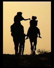 riding off into the sunset.. (Amar Jain) Tags: trip sunset fun ride explore camel pushkar soe photog camelride blueribbonwinner supershot abigfave anawesomeshot believemeitwasawesomefun ichoosetoclickoveracamelride butfinallygotontoacamel