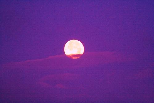 Moon and purple sky