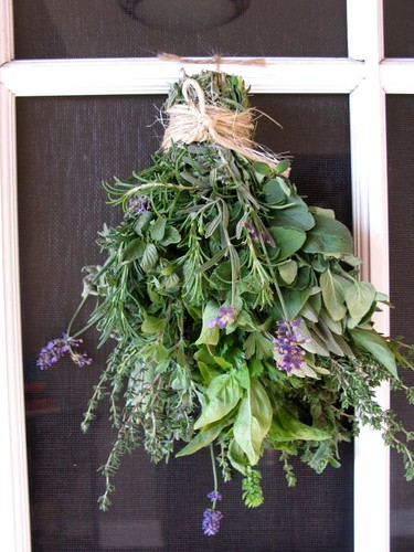 Herbs from Schaner Farms