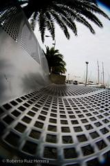 Un descanso en el paseo (Berts @idar) Tags: puerto banco fisheye vacaciones crucero peleng palmademallorca ojodepez paseomarítimo islasbaleares espaa peleng8mmfisheye canoneos400ddigital paseomartimo pendientesdeetiquetar