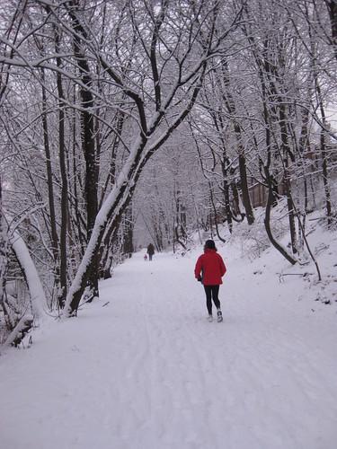 First Snowfall 2008-9 Toronto Beltline