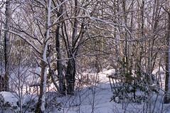 Last Weeks SnowStorm