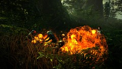 25880TheWitcher2_10_fight forrest_800x450_800x450