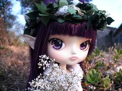 Merryweather (Lois Wayne) Tags: wood flowers fan outfit eyes flat princess dal pixie elf fairy planning ala ear pullip re custom blanche xiao jun milch elve rewigged