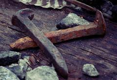 railroad nails (foxrosser) Tags: old railroad metal rust tennessee nails flickrchallengewinner