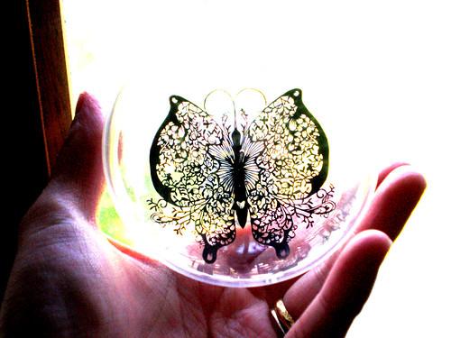 papillon ball