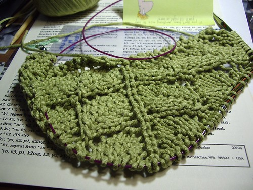 leaf shawl 1