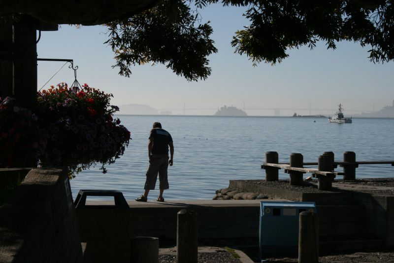Sausalito Harbor