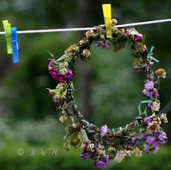 Midsummer garland {HBW} (♥ B i b b i ♥) Tags: flowers summer canon 50mm midsummer sweden bokeh garland sverige blommor 2008 krans midsommar sommar 30d hässelby canon30d canon50mmf18ii 50mmf18ii hbw bokehwednesday