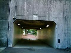 【写真】VQ3007で撮影した朝の風景(トンネル)