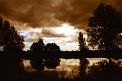 Dark days ahead..... (law_keven) Tags: trees england london water weather clouds reflections richmond richmondpark silhuettes explore500 theperfectphotographer goldenvisions