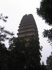 China-1688