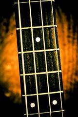 Hardwired - a guitar neck in Stayton Oregon