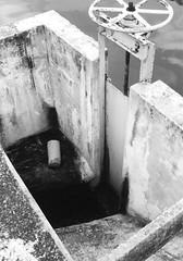 valve (Eddie-Willers) Tags: mexico blackwhite waterworks tampico