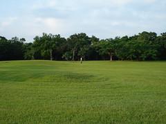 羅東運動公園內到處都是漂亮草地