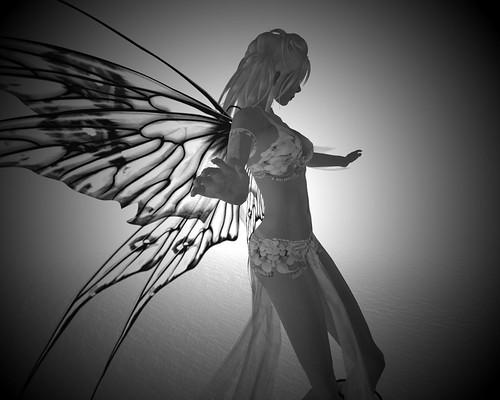Fancy Fairy Wings by you.
