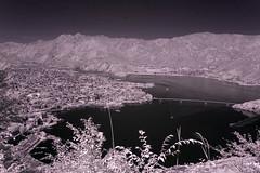 Kawaguchi Lake Viewed From Kachi Kachi Mountain (aeschylus18917) Tags: infrared japan yamanashi kawaguchi lake mountains bridge nikon d70 danielruyle aeschylus18917 danruyle druyle 赤外線 ir landscape scenery surreal nikond70 sky tree ダニエルルール ダニエル ルール mountfuji 富士山 fujisan yamanashiprefecture 山梨県 yamanashiken nature mountain kachikachimountain nikkor1870f3545g nikkor1870f3545gdx kawaguchiko lakekawaguchi kawaguchilake かちかち山 日本 1870mm 1870f3545g pxt