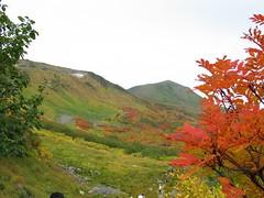 高根ヶ原と緑岳