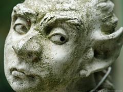Sad Gargoyle Face - Ornate (Digital Wallpapers) Tags: statue closeup moss free gargoyle buy ornate purchase desktopwallpaper sadface sadeyes gardenornament stockphotography