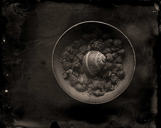 some memories are as precious as water #1 (ambrotype)