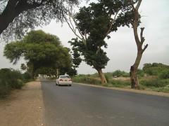 A road to Mirpur Khas. (Masd) Tags: pakistan white green car honda drive mango toyota hyderabad sindh mirpurkhas
