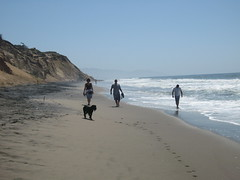 (ladygay) Tags: sf beach fortfunston