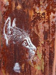 C215 - Brooklyn (C215) Tags: nyc streetart art brooklyn french graffiti stencil christian williamsburg pochoir masacara szablon c215 schablon gumy piantillas guemy
