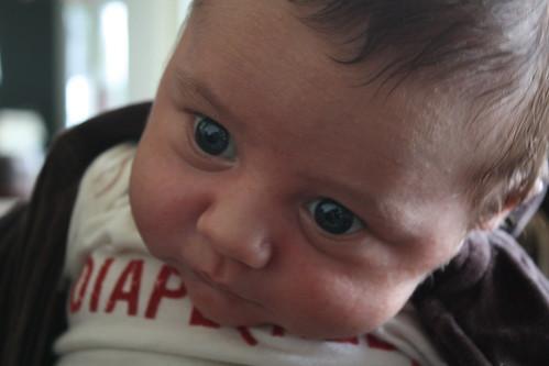 Hudson at 4 weeks