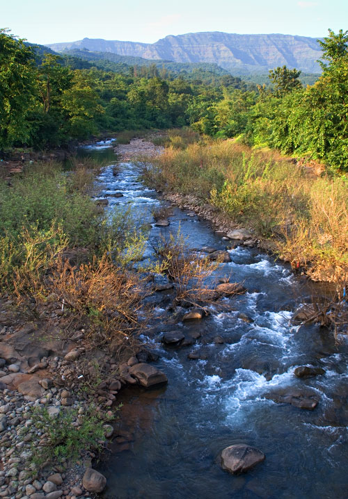 Stream, on the way to Marleshwar