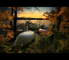 The Wait (Nina_999) Tags: autumn winter sunset leaves canon finland boat leaf maple shore magical ogm themoulinrouge goldenglobe coolshot eos5d passionphotography beautifulexpression golddragon mywinners abigfave anawesomeshot colorphotoaward visiongroup infinestyle amazingamateur overtheexcellence elitephotography betterthangood theperfectphotographer multimegashot damniwishidtakenthat thedavincitouch vosplusbellesphotos leamisdupetitprince goldenmasterpiece