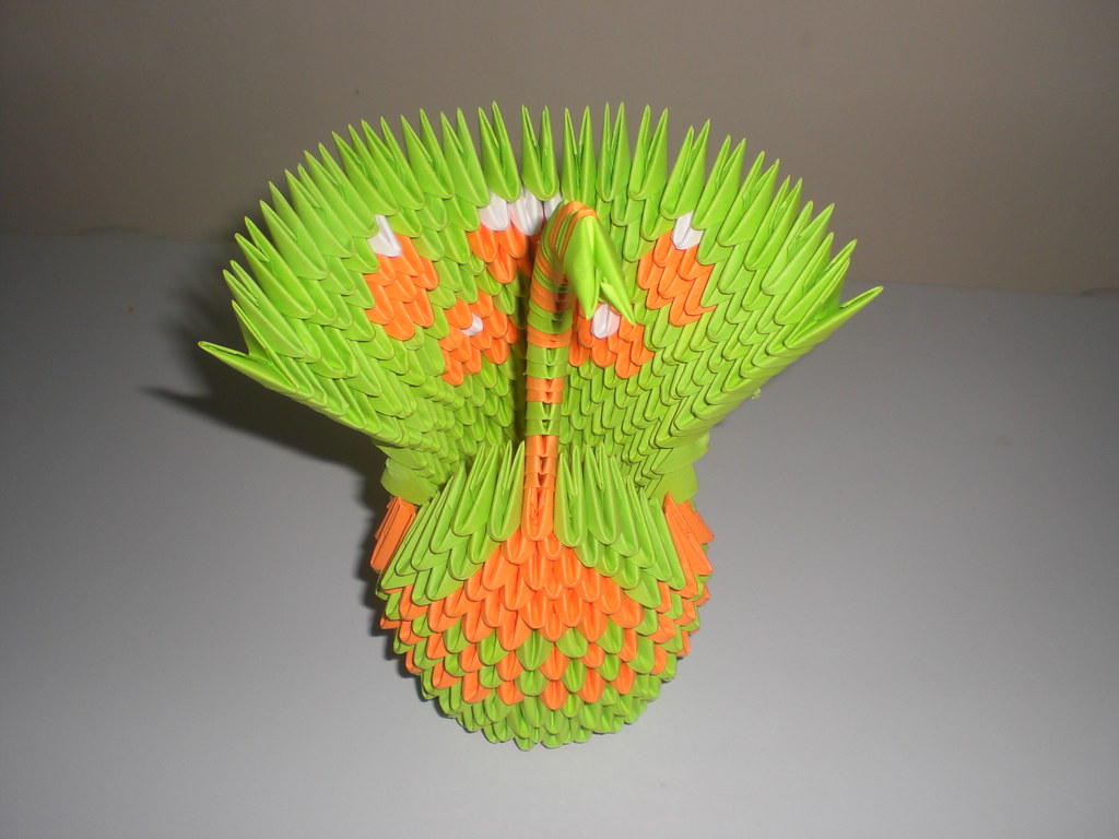 The Worlds Best Photos By Waterforestnature Flickr Hive Mind Origami 3d Peacock Instructions Diagram Tags