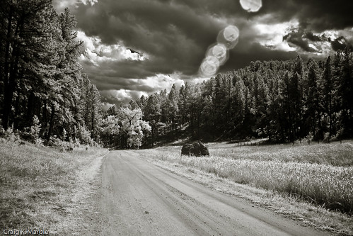 Black Hills Infrared