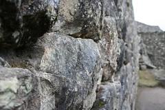 Machu Picchu 049