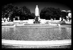 The UT Fountain (Steve Rogers Photography) Tags: sculpture water fountain austin texas