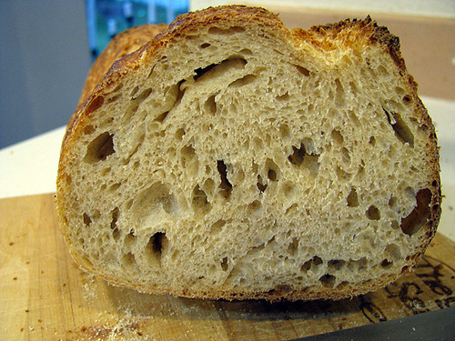 Whole Wheat Sourdough Crumb